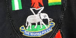 Nnewi PG says man, who killed his children, mother was mad