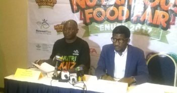 Nutritious Food Fair to boost Nigeria's tourism and hospitality sector -HarvestPlus